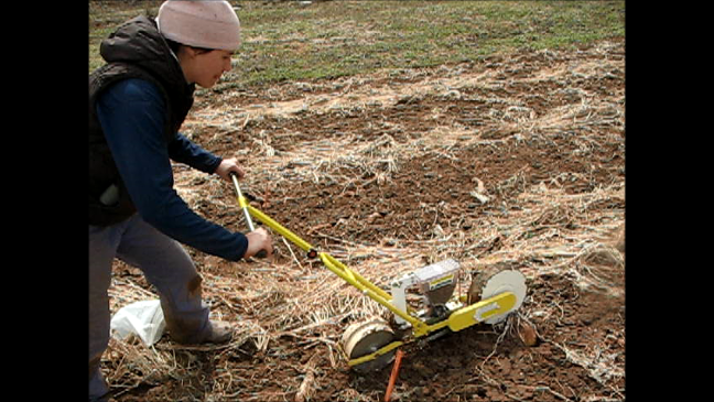 Can push seeders work in an untilled seedbed?