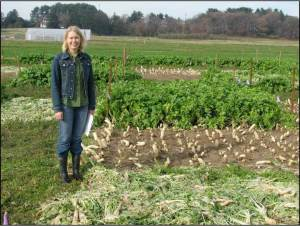 Yvonne Lawley found that removing the tops of radishes in late fall did not influence the weed suppression in spring because the weeds had already been suppressed. Photo: Ray Weil.