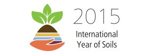 FAO IYS logo