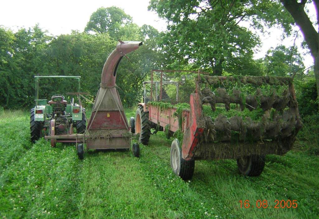 """The """"cut and carry"""" approach Jan and his colleagues use adds weed suppression and fertility to vegetable fields."""