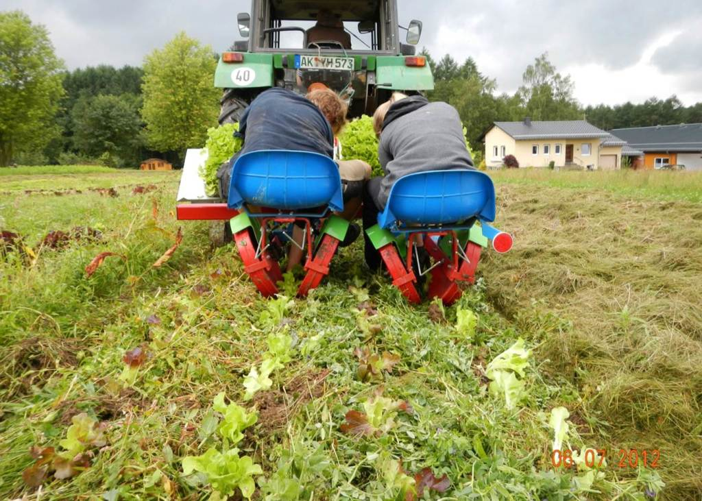 The transplanter they have developed can slice through heavy mulch. Photo: Jan-Hendrick Cropp.